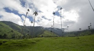 Itinérarie de 15 jours en Colombie